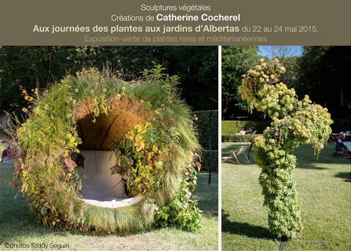jardin-albertas-2015-catherine-cocherel